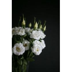 """Цветок искусственный """"Эустома"""""""