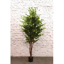 Растение искусственное Смоковница, высота=210 см