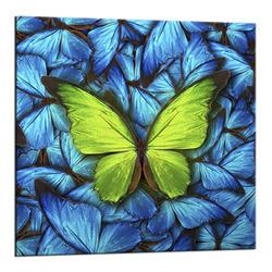 "Картина-репродукция 20x20 см ""Бабочка на голубом"""
