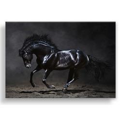 """Картина-репродукция с эффектом """"серебра"""" на холсте 85x113 см """"Чёрная лошадь"""""""