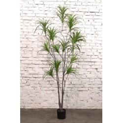Растение искусственное Драцена, высота=260 см