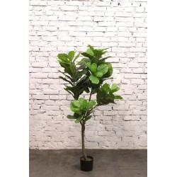 Растение искусственное Фикус, высота=165 см