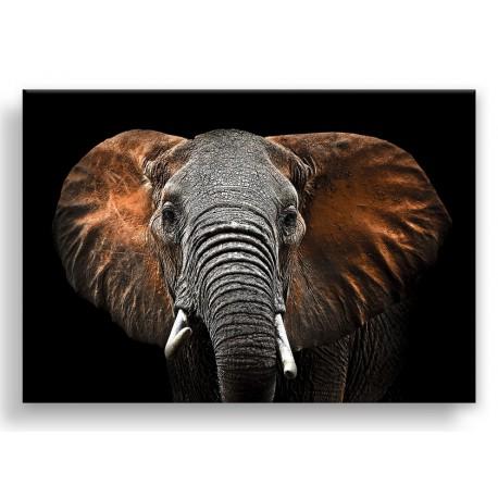 """Картина-репродукция на стекле 80x120 см """"Слон-1"""""""