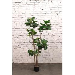 Растение искусственное Птерокария, высота=170 см