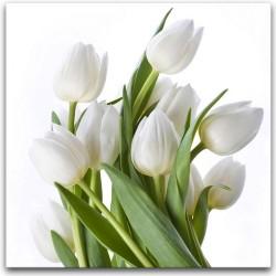 """Репродукция на холсте 60x80 см """"Белые тюльпаны"""""""