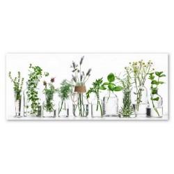 """Репродукция на стекле 30x80 см """"Herbs"""""""