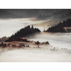 "Репродукция на холсте 85x113 см ""Туман"""